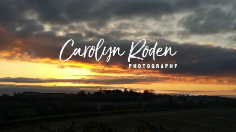 Carolyn Roden Stalbridge Photographer